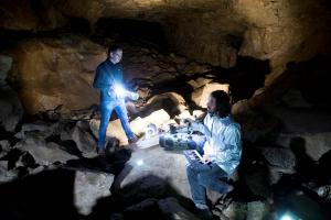 Cave-based performance uses field recordings and bat sounds