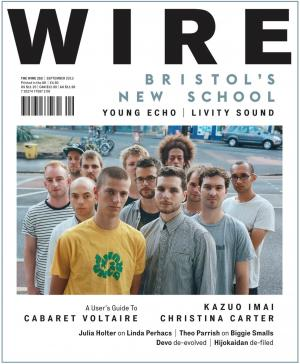 The Wire Issue 355 September 2013