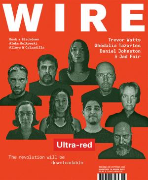 The Wire Issue 295 September 2008
