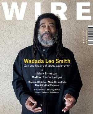 The Wire Issue 312 February 2010