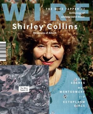 The Wire Issue 393 November 2016 Cover