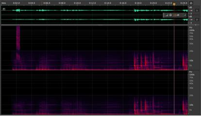 Spectrogram of AUDiNT's ghostcoded The Carpenters - The Carpenters.flac with hidden track